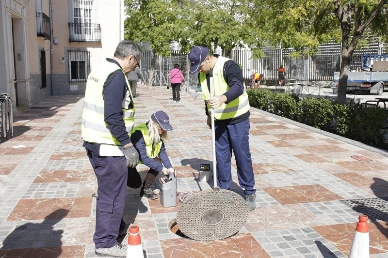 El Ayuntamiento de Lucena redobla en el nuevo contrato los tratamientos de control de plagas durante el verano