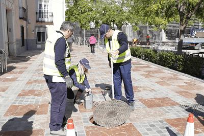 El Ayuntamiento de Lucena activará con la llegada de las altas temperaturas el dispositivo especial contra plagas de insectos y roedores
