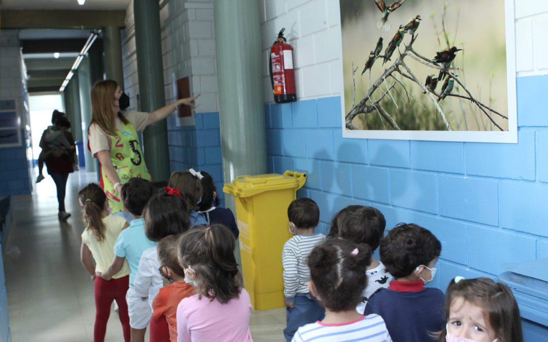 Una exposición sobre la biodiversidad de Lucena visita los colegios e institutos